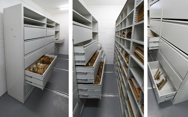 Arquivo deslizante Herbario